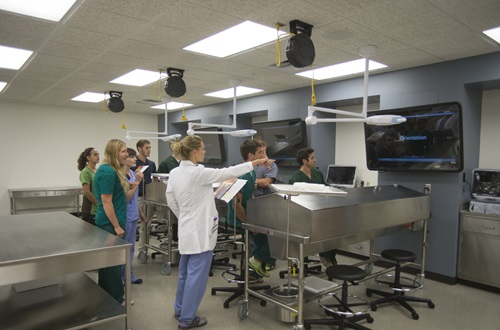 Accredited Nursing Schools >> New Anatomy Labs Bring Advanced Experience for Students ...