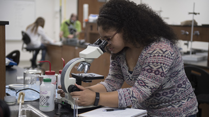 Cedarville student looking in microscope