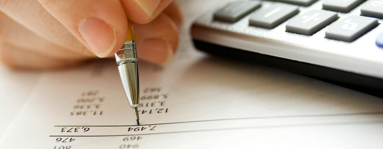 Person with pencil studies financial document
