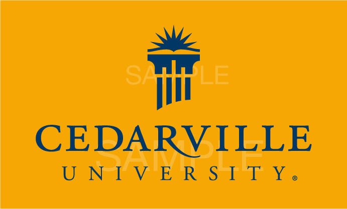 Blue on Gold Logo