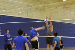 Campus Recreation, Volleyball, Fall 2016