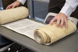 Someone unrolling the Torah Scroll on a table