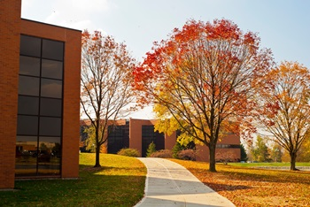 Fall at Cedarville