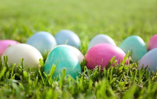 Cedarville alumni relations Easter Egg Hunt