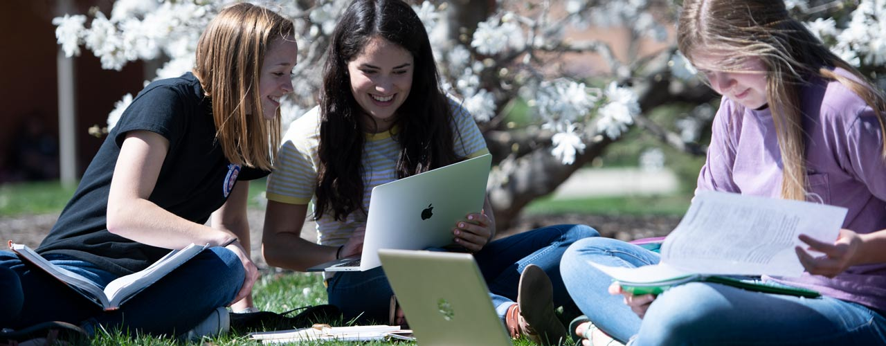 Students studying outdoors