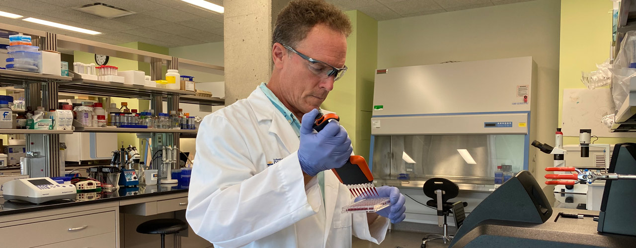 Dr. Rocco Rotello working in a lab