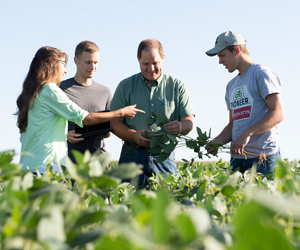Dr. Robert Paris and students on soybean research farm