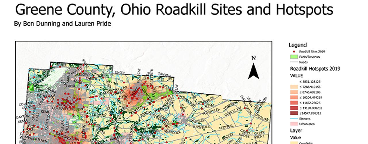 Greene County roadkill hotspots map