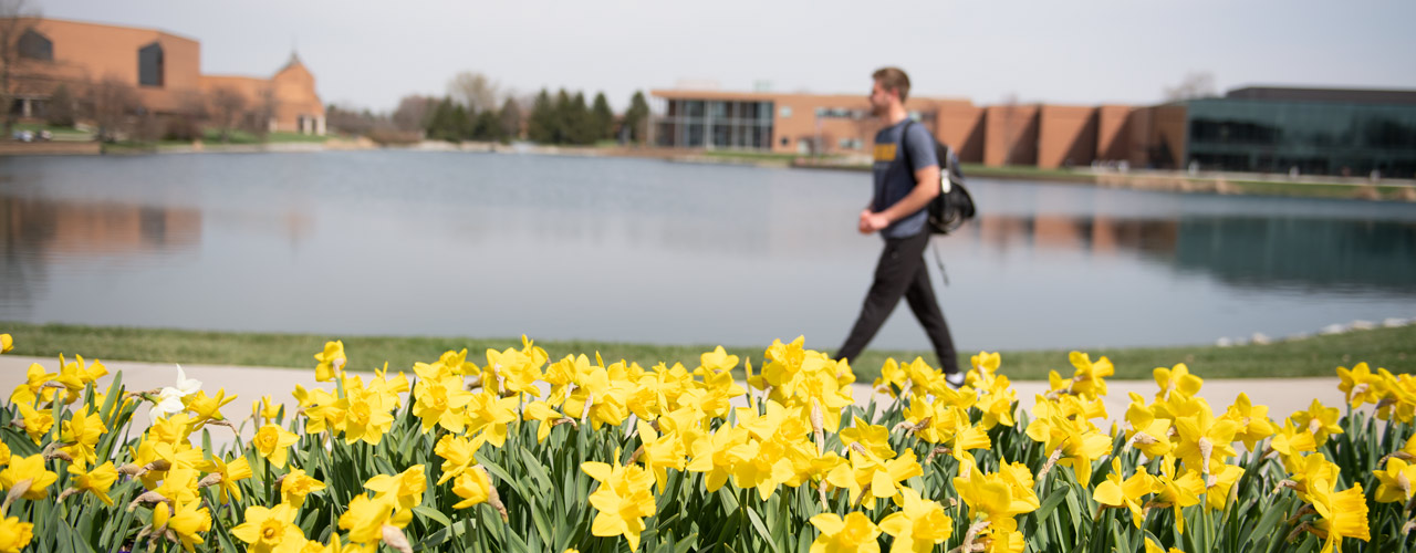 Student walking past daffodils with Cedar Lake, Dixon Ministry Center and the School of Biblical and Theological Studies in the background