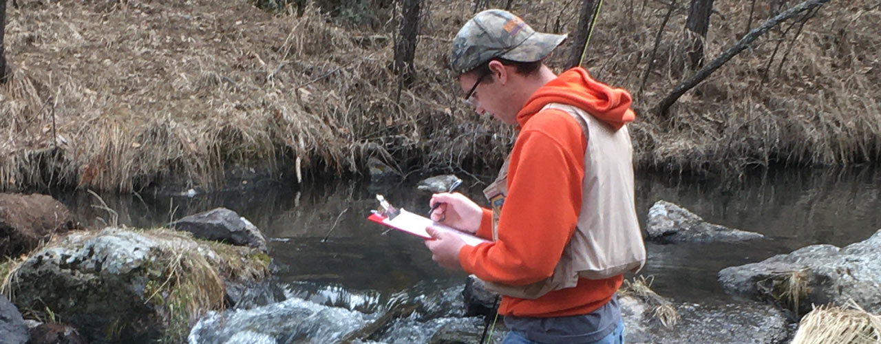 Carson Gehman records data about water quality from a local stream
