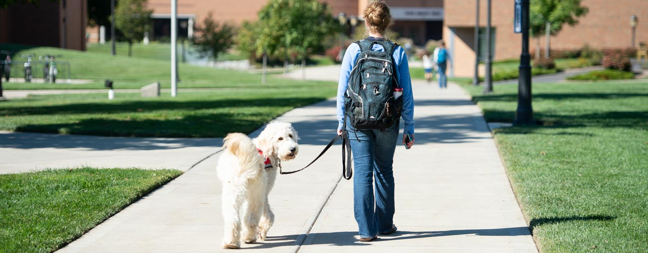 picture of female student walking with service dog while dog looks at the camera
