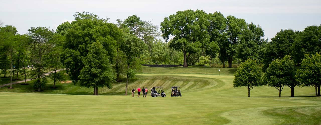 A golf course with people and carts in the distance