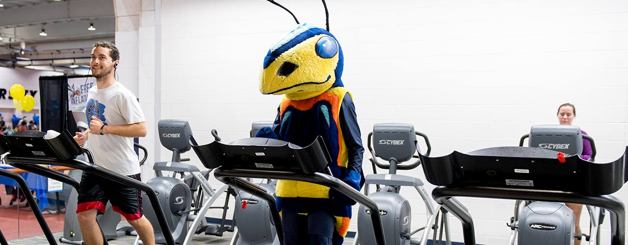 The Cedarville Yellow Jacket mascot