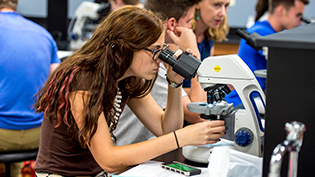 Molecular Biology alum looks through microscope