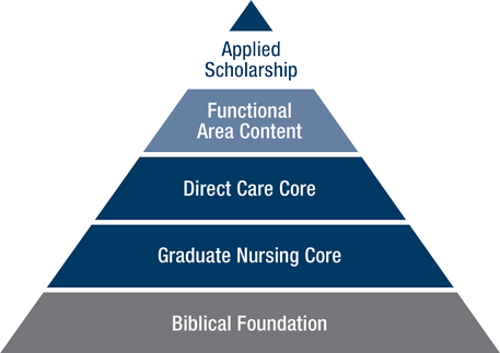 Diagram of the progression and increasing specificity of course studies in MSN as represented by a pyramid.