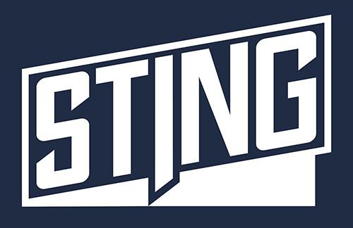 STING Logo