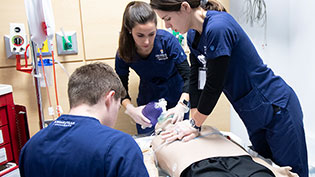Nursing students practicing CPR on a mannequin.