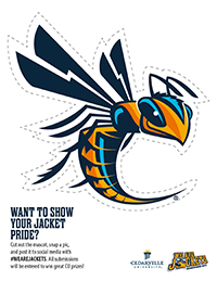 Printable Yellow Jacket