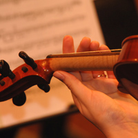 Orchestra Concert to Feature Violin Duo