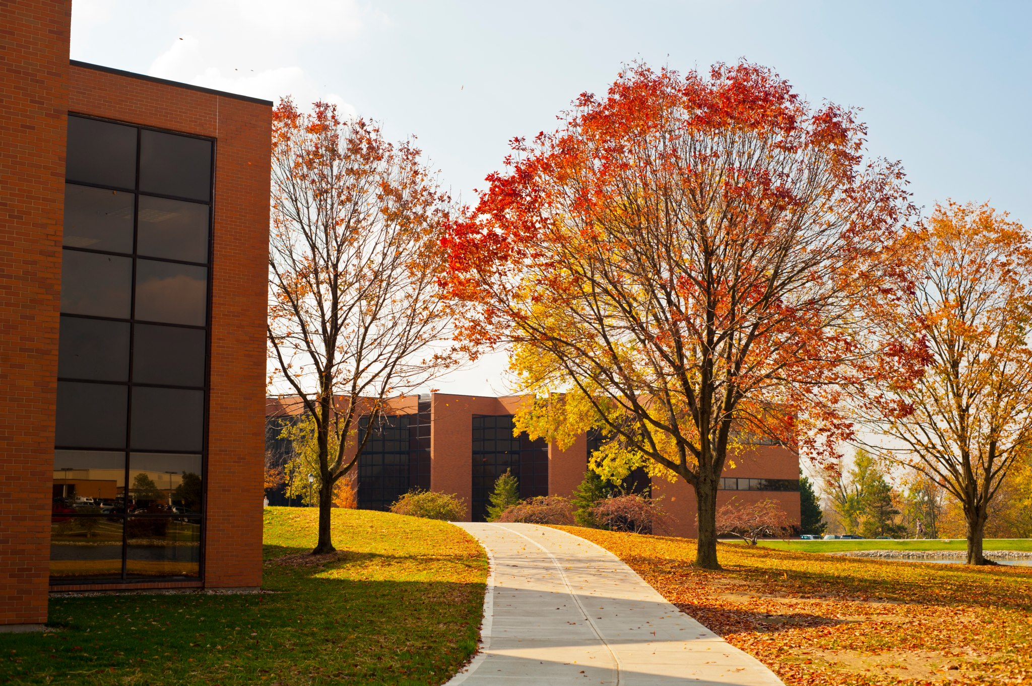 Fall Colors at Cedarville